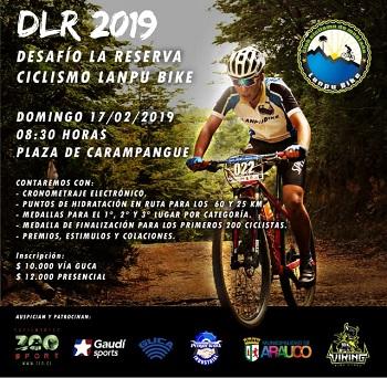 DLR-2019